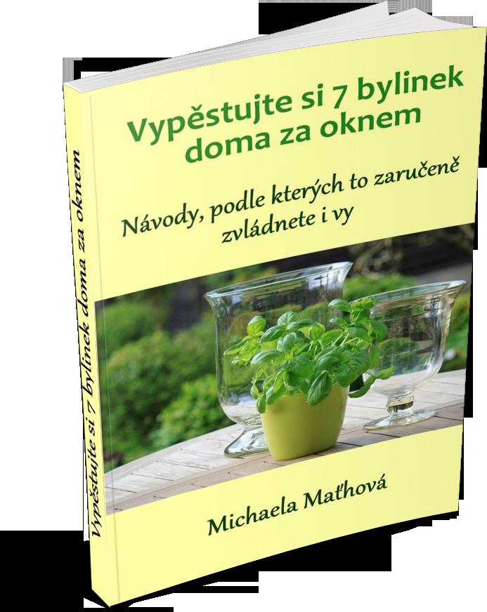 ebook-71-bylin-na-posileni-imunity