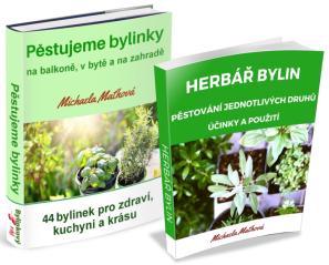eBook Pěstujeme bylinky na balkoně, v bytě a na zahradě