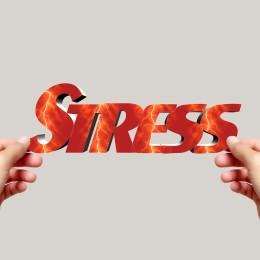 bylinkami proti stresu a depresím